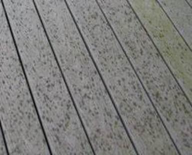 Composite Deck Damage